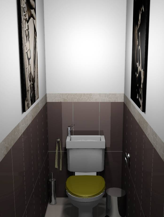 D coration d 39 int rieur de wc damarie les lys 77 for Carrelage mural wc