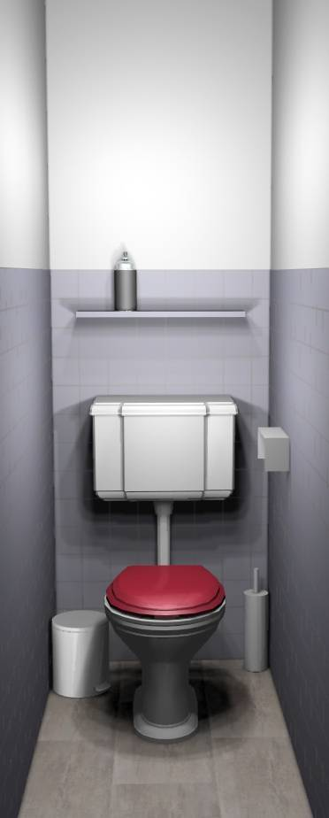 Wc carrelage peint sol carrelage rénovation abattant rouge